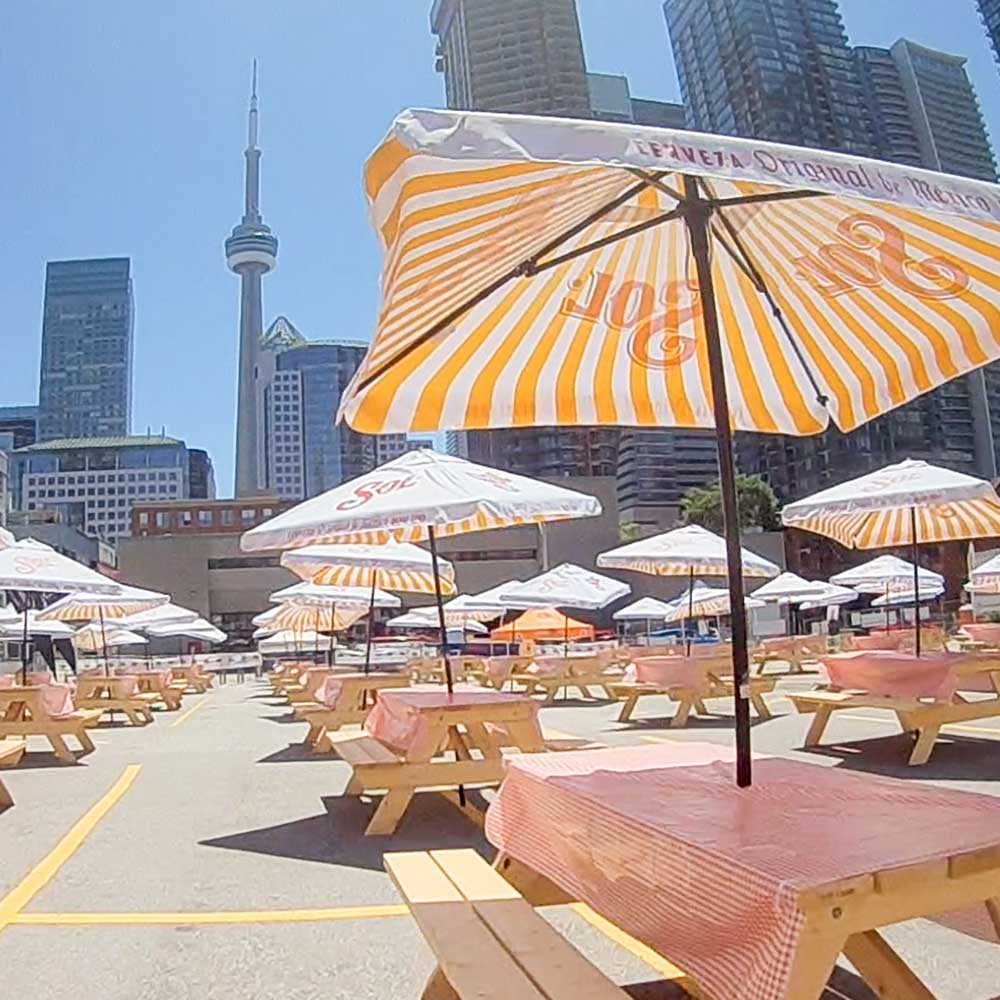 Rendezviews Toronto Daytime